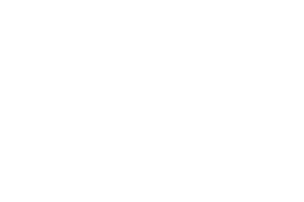 Logo IZ Weiß vor transparentem Hintegerund